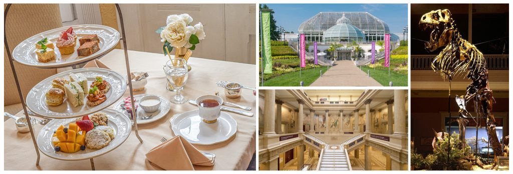 Museums and afternoon tea